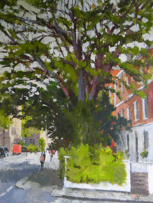 Elm Place Ash Tree