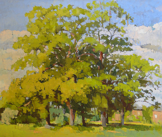 Jill Barthorpe Horse Chestnut Trees